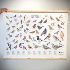 Wandkaart Tuinvogels
